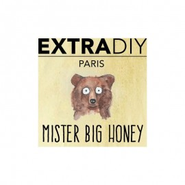 ExtraDIY Arôme MISTER BIG HONEY (40)